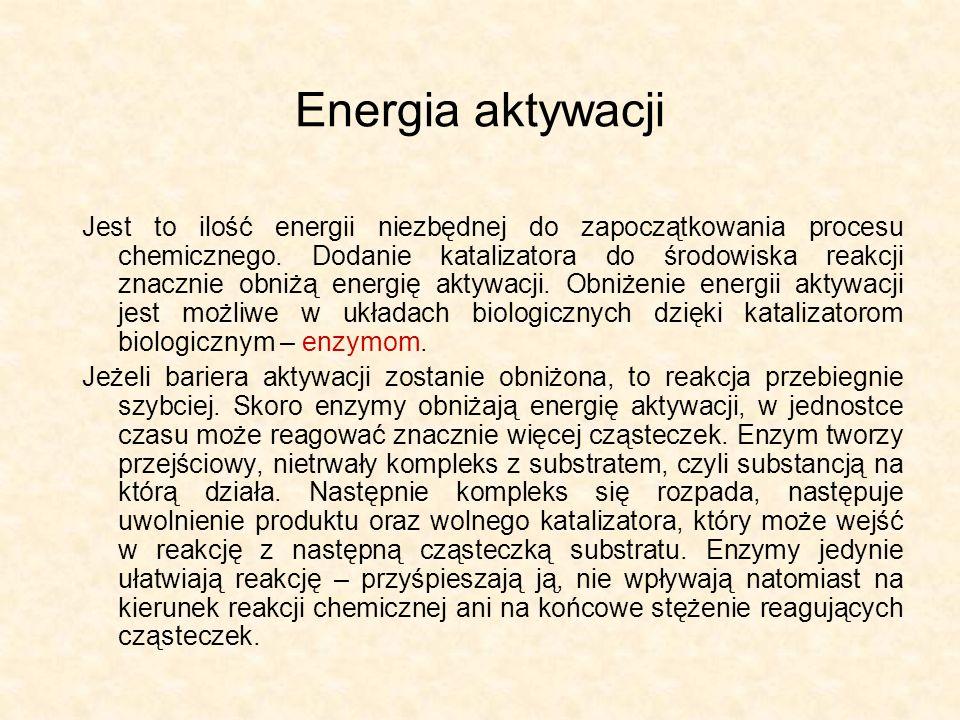 Efekt obecności biokatalizatora w środowisku REAKCJA NIEKATALIZOWANA REAKCJA KATALIZOWANA ENERGIA SUBSTARTY PRODUKTY ENERGIA AKTYWACJI BEZ UDZIAŁU ENZYMU ENERGIA AKTYWACJI Z UDZIAŁEM ENZYMU WYDZIELONA ENERGIA POSTĘP REAKCJI
