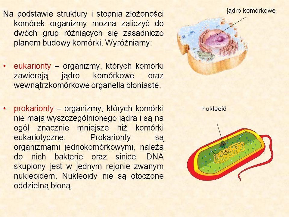 Komórka jest to najmniejsza strukturalna i funkcjonalna jednostka organizmów żywych.