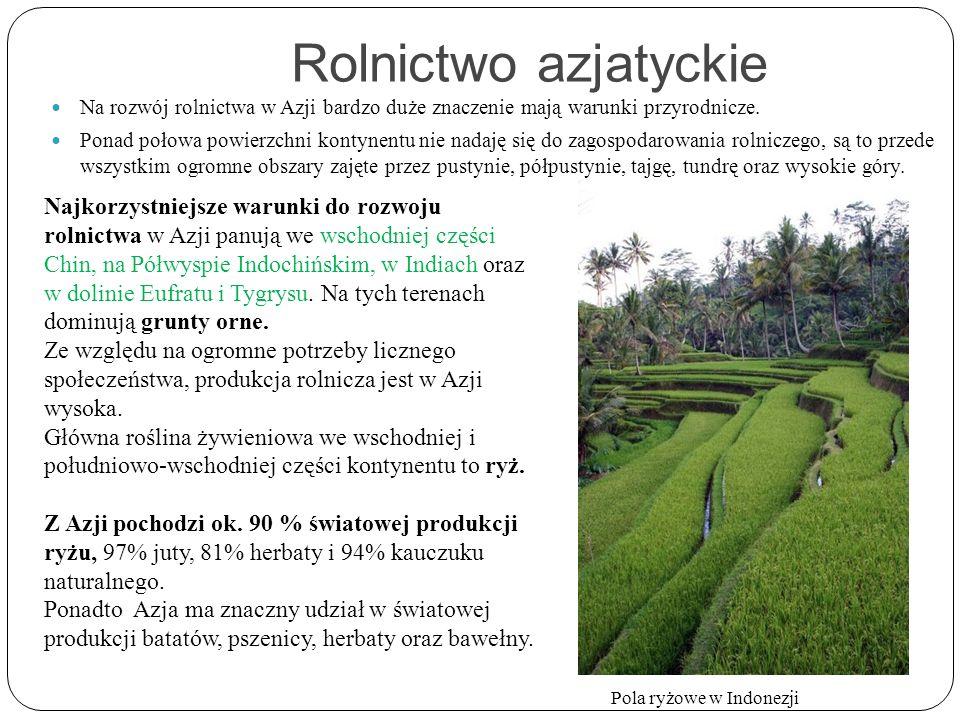 Rolnictwo azjatyckie Na rozwój rolnictwa w Azji bardzo duże znaczenie mają warunki przyrodnicze. Ponad połowa powierzchni kontynentu nie nadaję się do