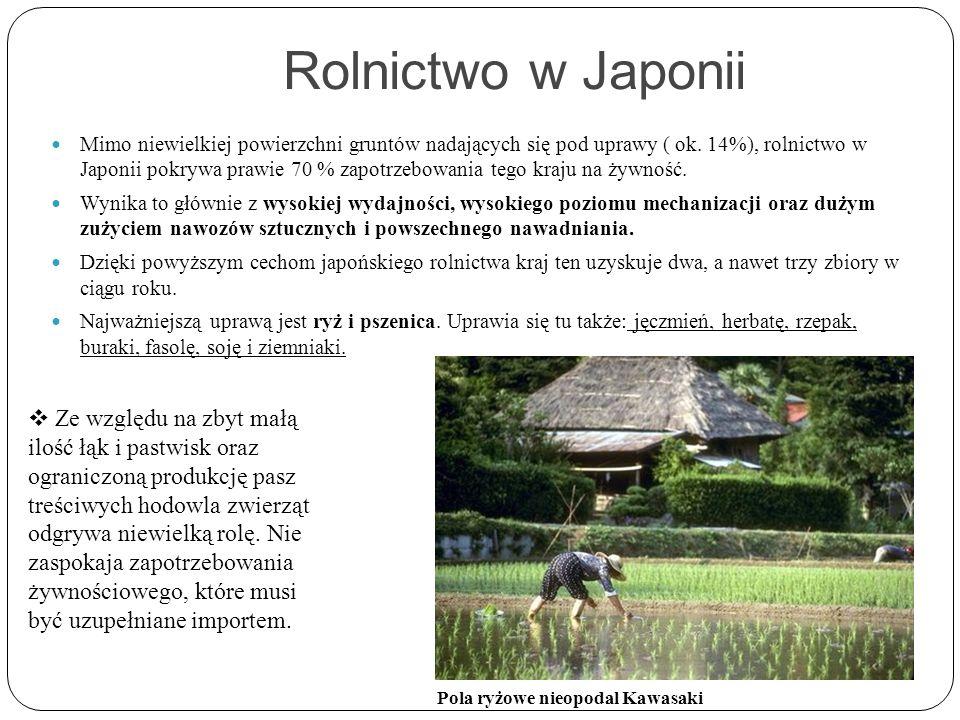 Rolnictwo w Japonii Mimo niewielkiej powierzchni gruntów nadających się pod uprawy ( ok. 14%), rolnictwo w Japonii pokrywa prawie 70 % zapotrzebowania