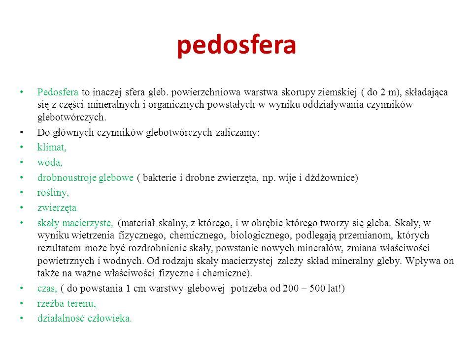 pedosfera Pedosfera to inaczej sfera gleb. powierzchniowa warstwa skorupy ziemskiej ( do 2 m), składająca się z części mineralnych i organicznych pows
