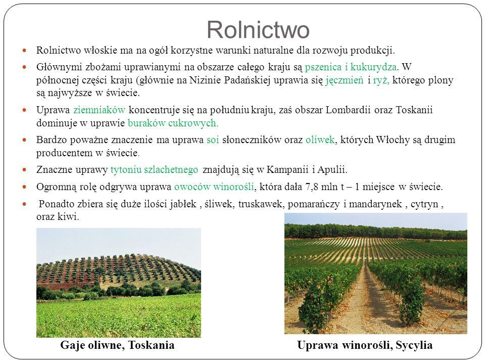 Rolnictwo Rolnictwo włoskie ma na ogół korzystne warunki naturalne dla rozwoju produkcji.