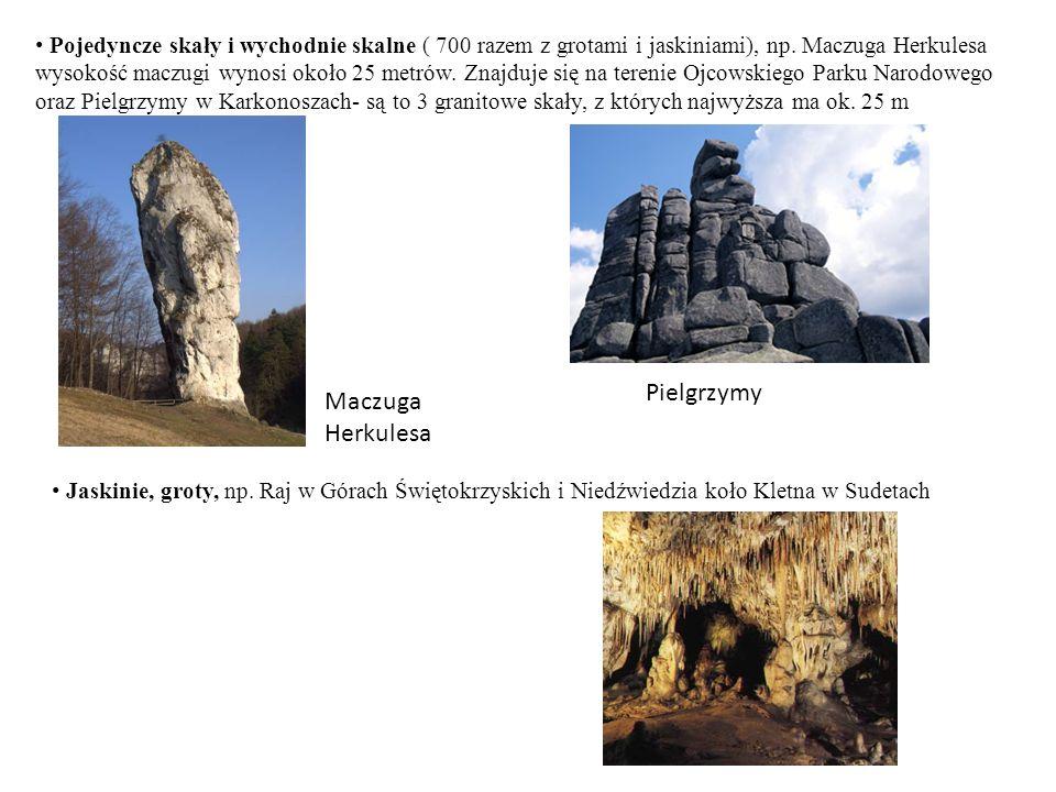 Pojedyncze skały i wychodnie skalne ( 700 razem z grotami i jaskiniami), np. Maczuga Herkulesa wysokość maczugi wynosi około 25 metrów. Znajduje się n