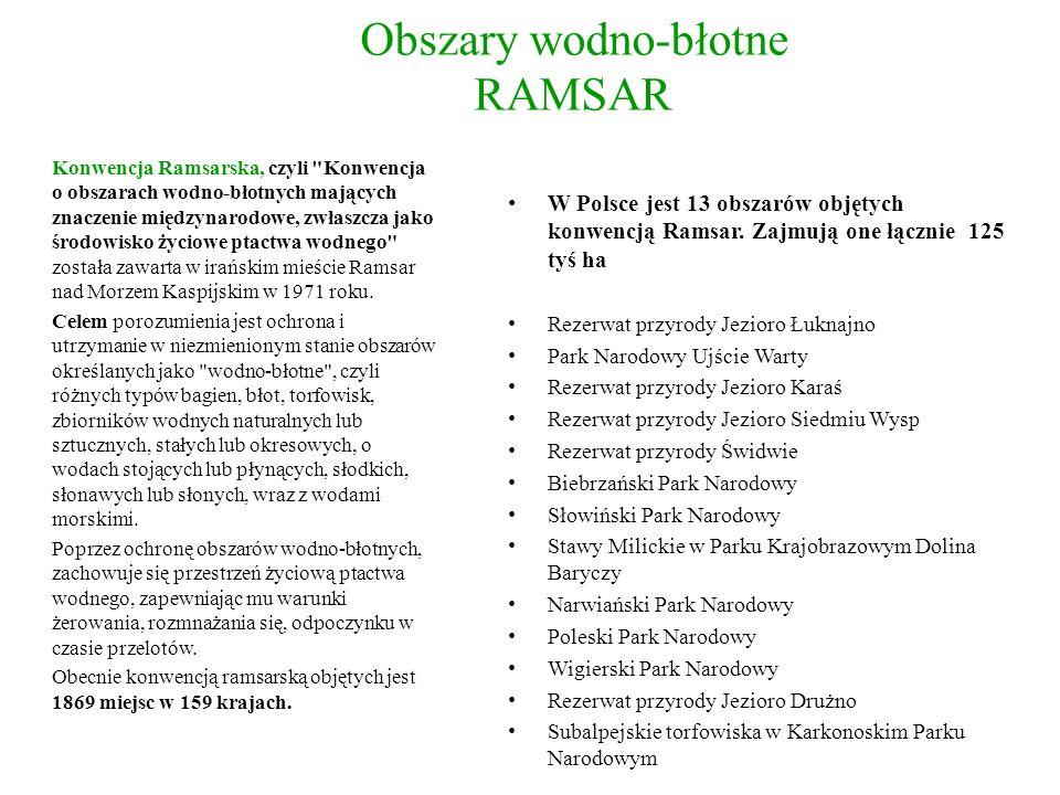 Obszary wodno-błotne RAMSAR W Polsce jest 13 obszarów objętych konwencją Ramsar. Zajmują one łącznie 125 tyś ha Rezerwat przyrody Jezioro Łuknajno Par