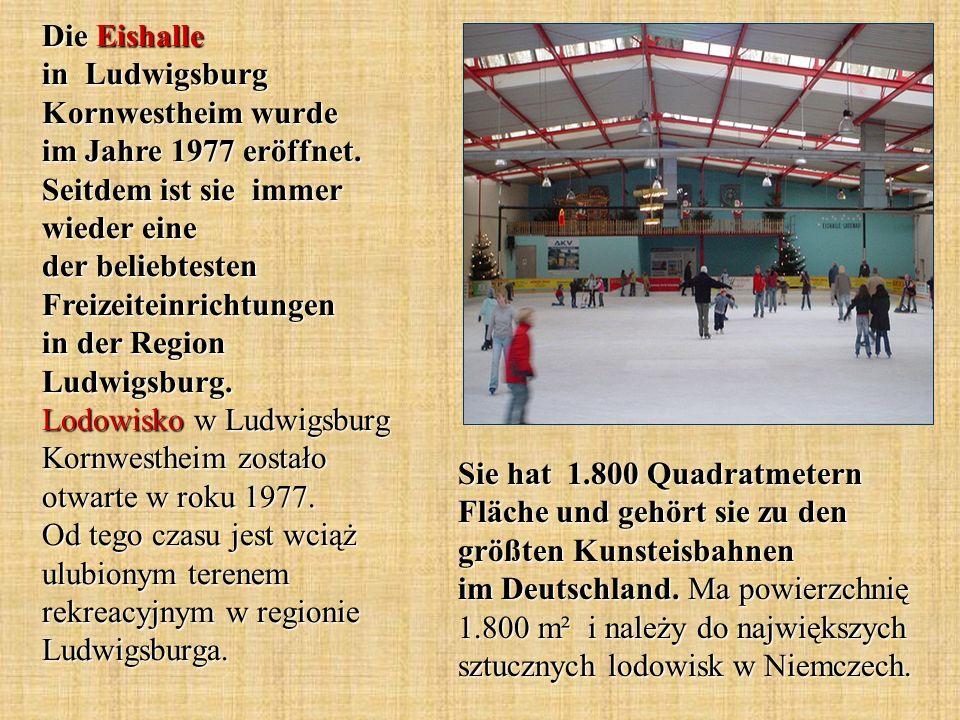 Sie hat 1.800 Quadratmetern Fläche und gehört sie zu den größten Kunsteisbahnen im Deutschland. Ma powierzchnię 1.800 m² i należy do największych sztu