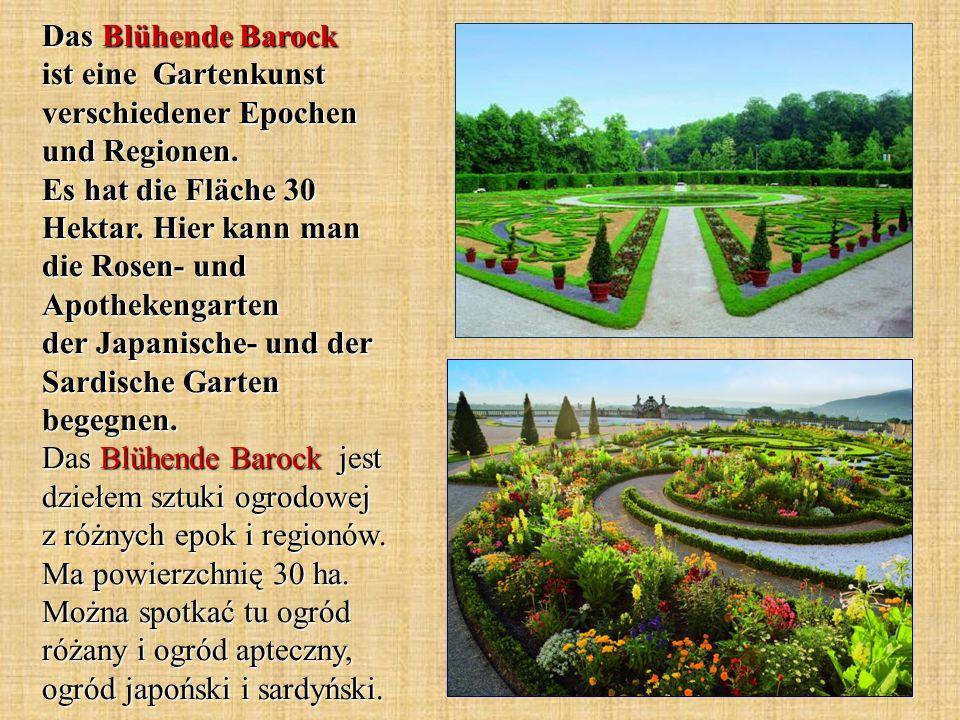 Das Blühende Barock ist eine Gartenkunst verschiedener Epochen und Regionen. Es hat die Fläche 30 Hektar. Hier kann man die Rosen- und Apothekengarten