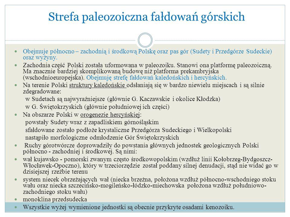 Strefa paleozoiczna fałdowań górskich Obejmuje północno – zachodnią i środkową Polskę oraz pas gór (Sudety i Przedgórze Sudeckie) oraz wyżyny. Zachodn