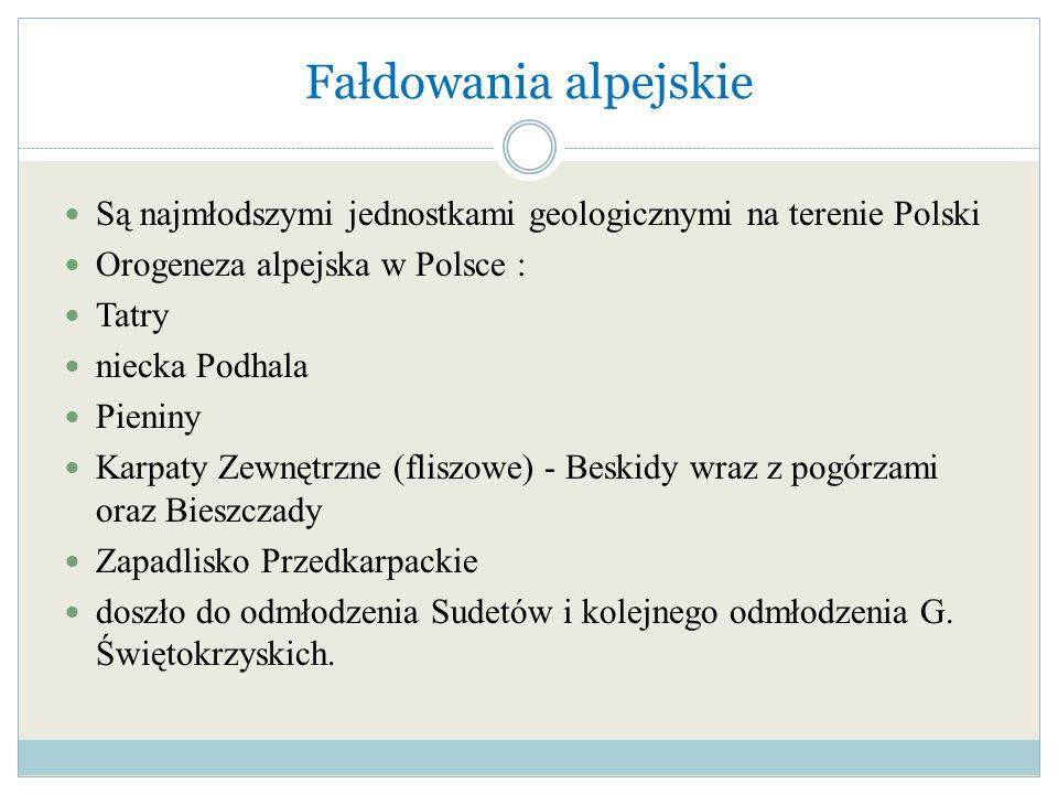 Fałdowania alpejskie Są najmłodszymi jednostkami geologicznymi na terenie Polski Orogeneza alpejska w Polsce : Tatry niecka Podhala Pieniny Karpaty Ze