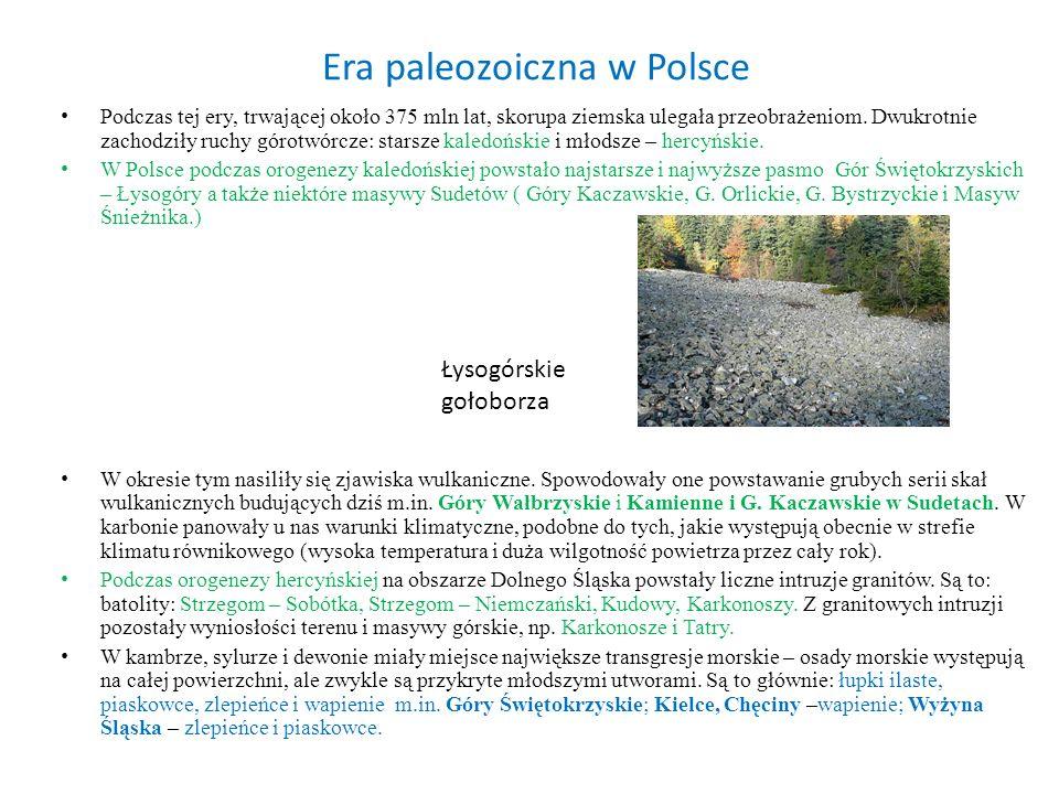 Era paleozoiczna w Polsce Podczas tej ery, trwającej około 375 mln lat, skorupa ziemska ulegała przeobrażeniom. Dwukrotnie zachodziły ruchy górotwórcz