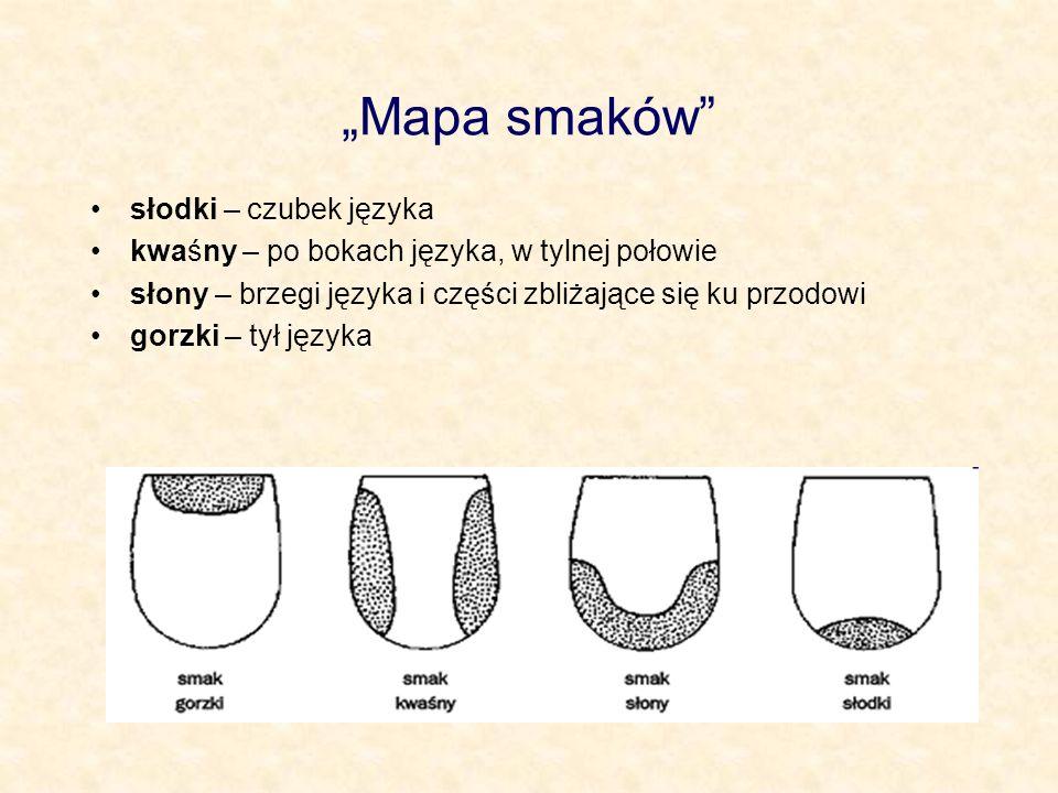 Mapa smaków słodki – czubek języka kwaśny – po bokach języka, w tylnej połowie słony – brzegi języka i części zbliżające się ku przodowi gorzki – tył