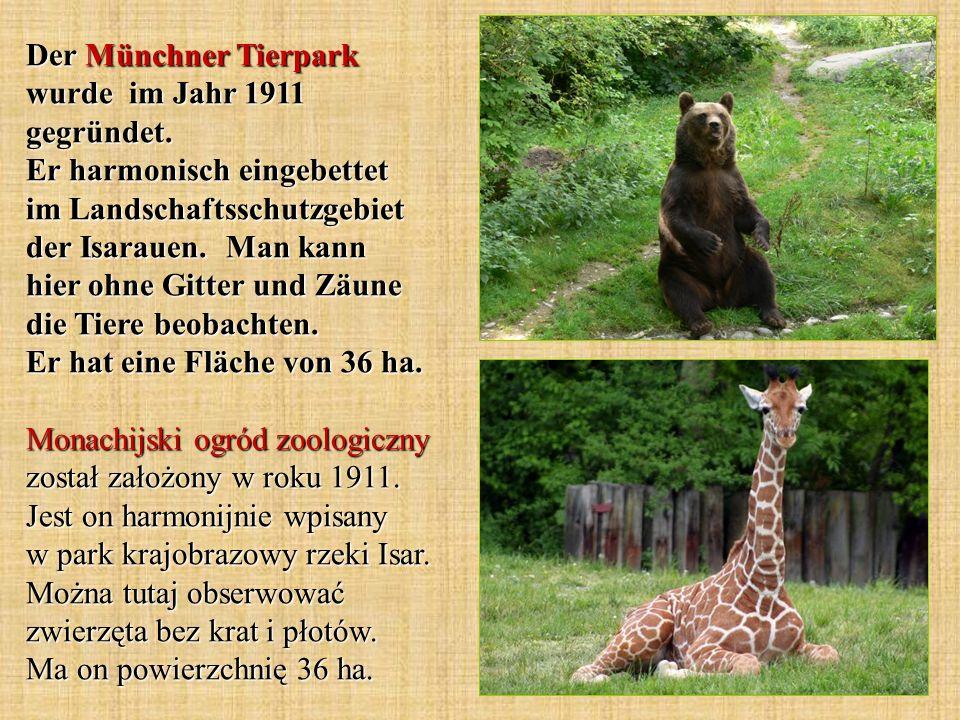 Der Münchner Tierpark wurde im Jahr 1911 gegründet. Er harmonisch eingebettet im Landschaftsschutzgebiet der Isarauen. Man kann hier ohne Gitter und Z
