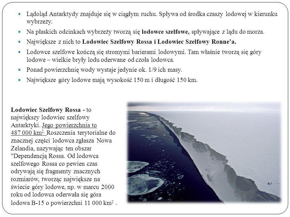 Lądoląd Antarktydy znajduje się w ciągłym ruchu. Spływa od środka czaszy lodowej w kierunku wybrzeży. Na płaskich odcinkach wybrzeży tworzą się lodowc