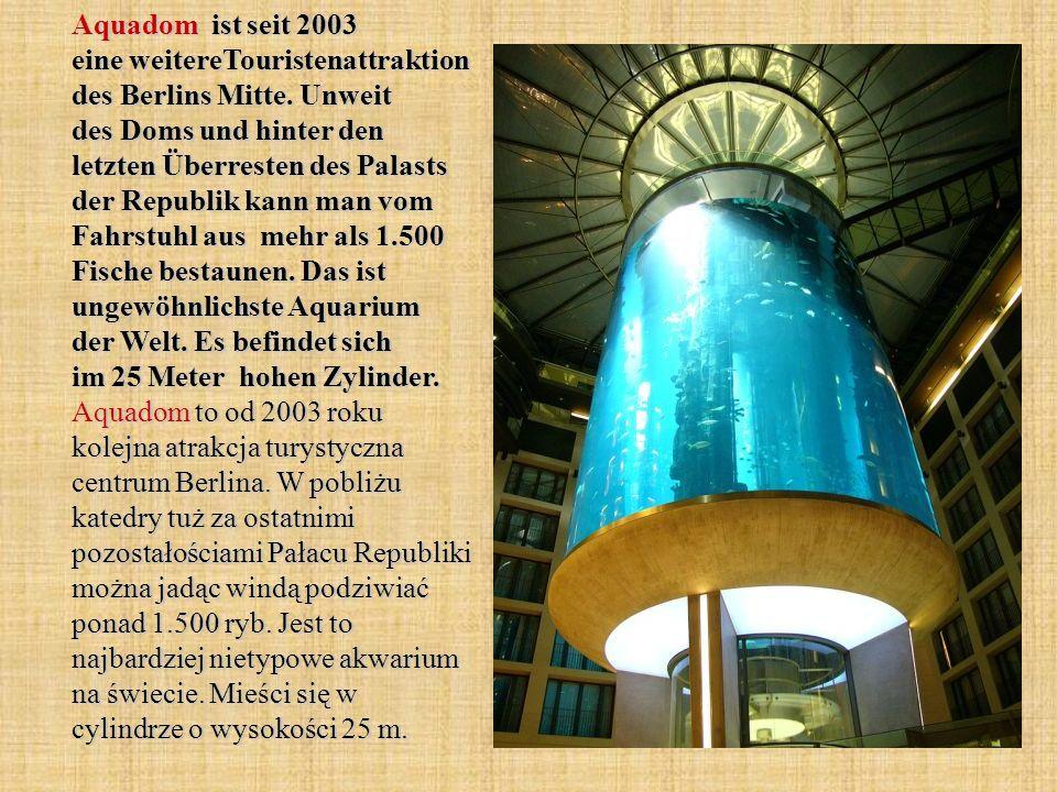 Aquadom ist seit 2003 eine weitereTouristenattraktion des Berlins Mitte. Unweit des Doms und hinter den letzten Überresten des Palasts der Republik ka