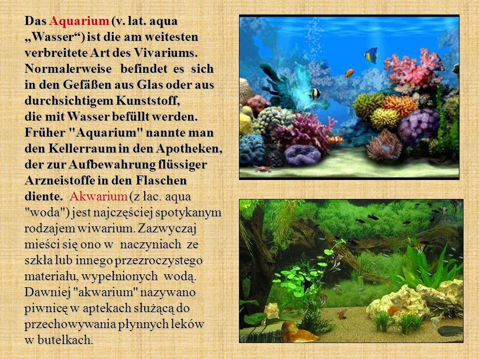 Das Aquarium (v. lat. aqua Wasser) ist die am weitesten verbreitete Art des Vivariums. Normalerweise befindet es sich in den Gefäßen aus Glas oder aus