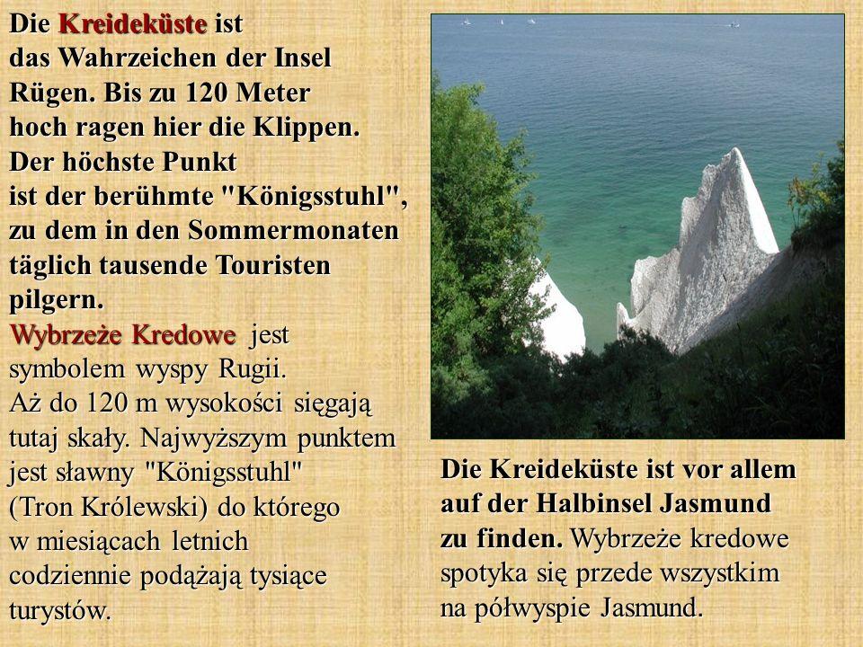 Die Kreideküste ist das Wahrzeichen der Insel Rügen. Bis zu 120 Meter hoch ragen hier die Klippen. Der höchste Punkt ist der berühmte