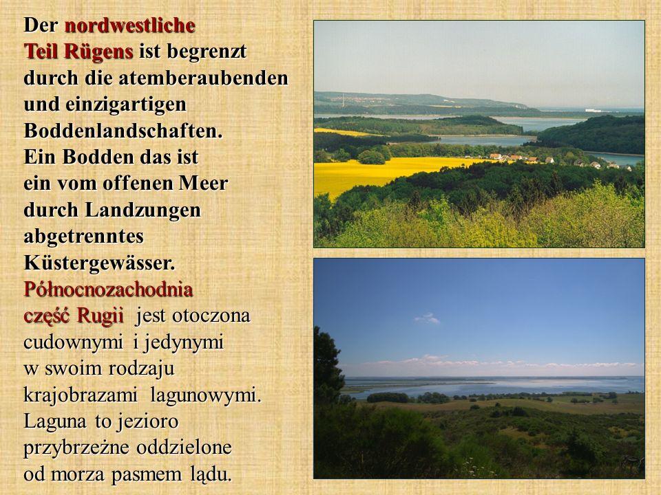Der nordwestliche Teil Rügens ist begrenzt durch die atemberaubenden und einzigartigen Boddenlandschaften. Ein Bodden das ist ein vom offenen Meer dur