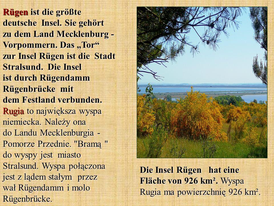 Rügen ist die größte deutsche Insel. Sie gehört zu dem Land Mecklenburg - Vorpommern. Das Tor zur Insel Rügen ist die Stadt Stralsund. Die Insel ist d
