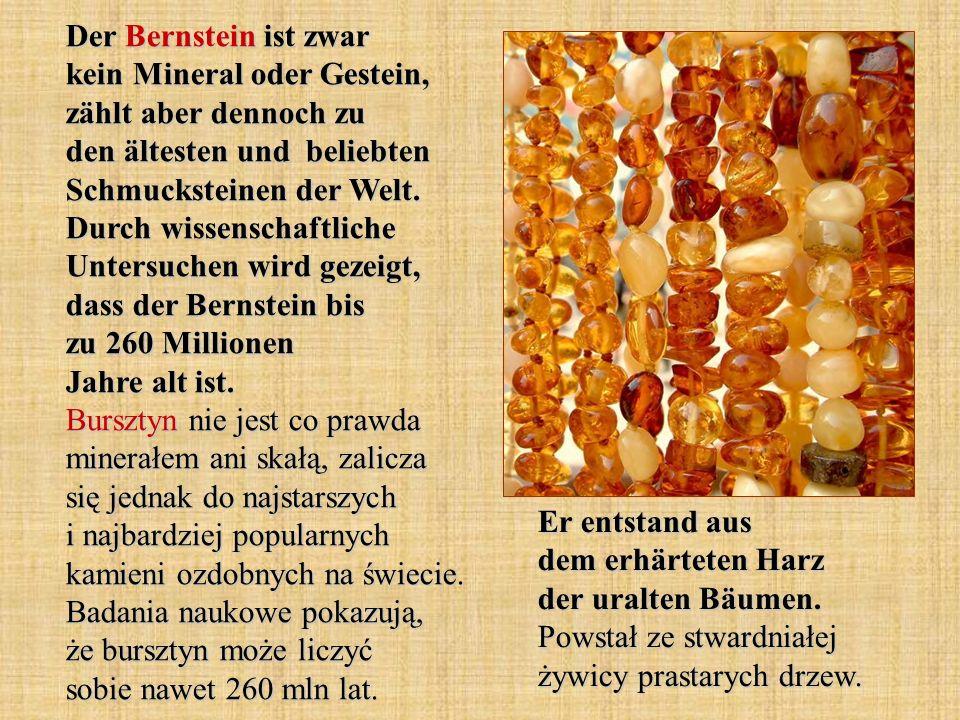 Der Bernstein ist zwar kein Mineral oder Gestein, zählt aber dennoch zu den ältesten und beliebten Schmucksteinen der Welt.