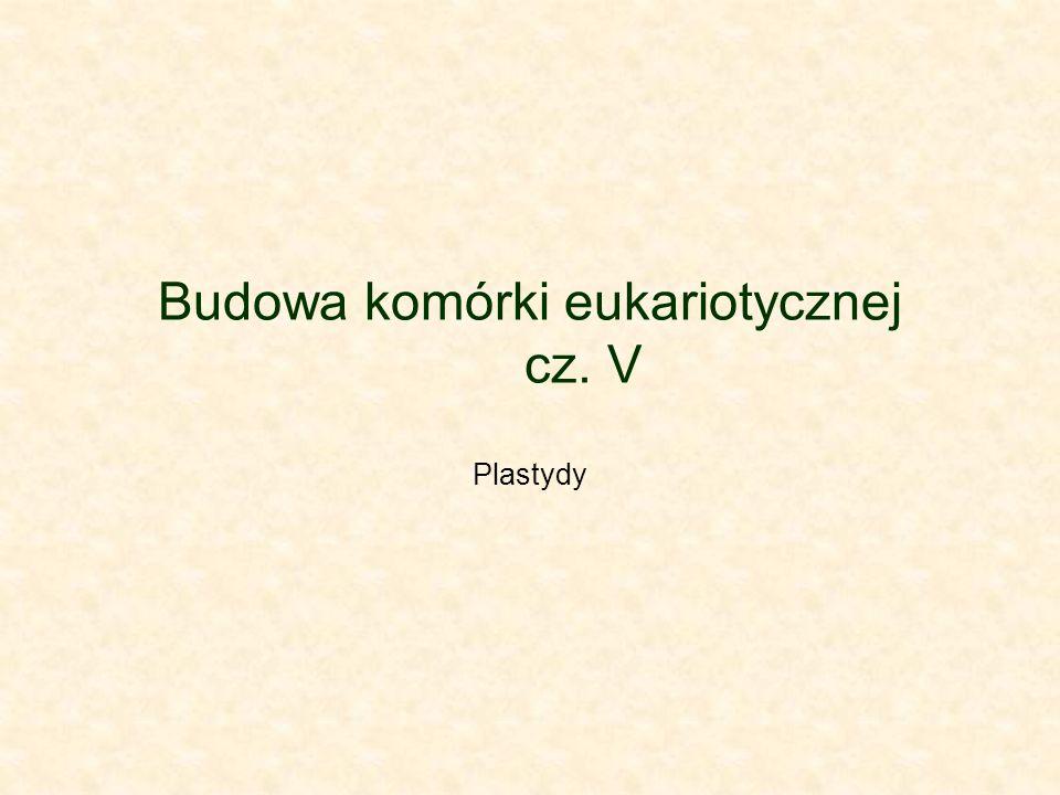 Budowa komórki eukariotycznej cz. V Plastydy