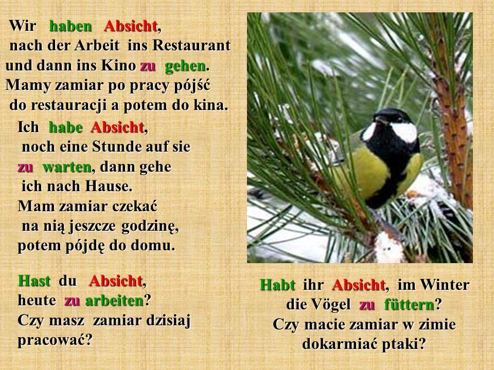 Habt ihr Absicht, im Winter die Vögel zu füttern? Czy macie zamiar w zimie dokarmiać ptaki? Wir haben Absicht, nach der Arbeit ins Restaurant und dann