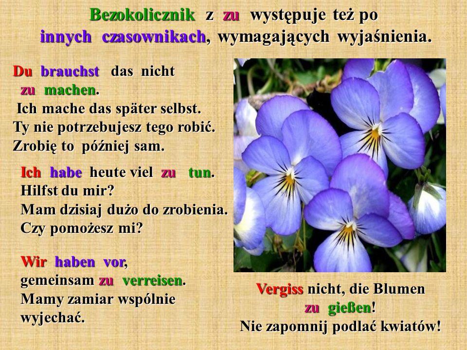 Bezokolicznik z zu występuje też po innych czasownikach, wymagających wyjaśnienia. Vergiss nicht, die Blumen zu gießen! Nie zapomnij podlać kwiatów! D