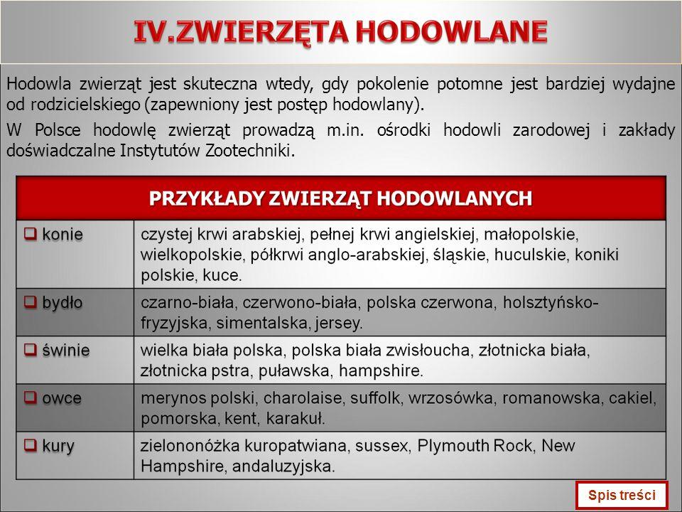 Hodowla zwierząt jest skuteczna wtedy, gdy pokolenie potomne jest bardziej wydajne od rodzicielskiego (zapewniony jest postęp hodowlany). W Polsce hod