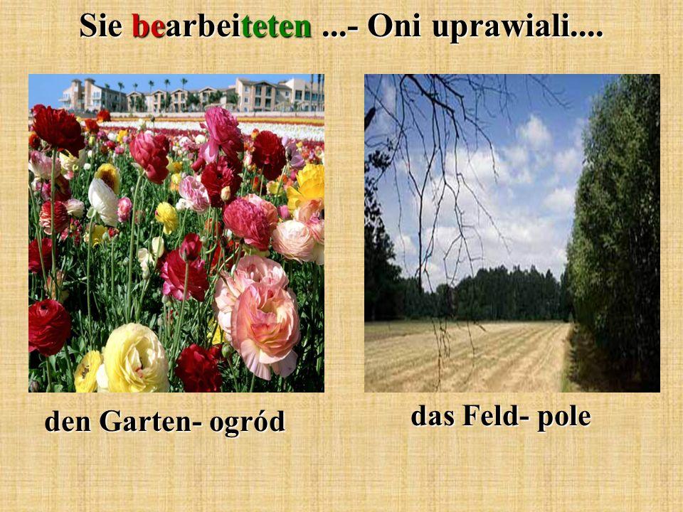 Sie bearbeiteten...- Oni uprawiali.... den Garten- ogród das Feld- pole
