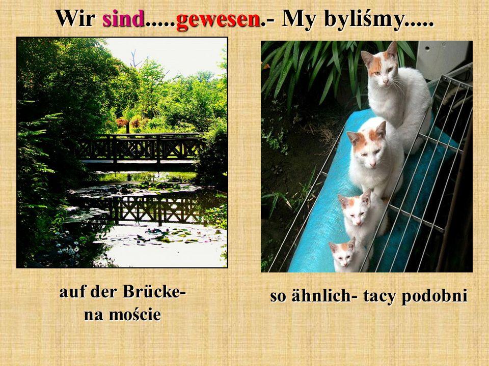 Wir sind.....gewesen.- My byliśmy..... auf der Brücke- na moście so ähnlich- tacy podobni