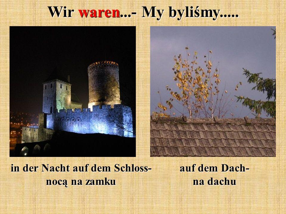 Wir waren...- My byliśmy..... in der Nacht auf dem Schloss- nocą na zamku auf dem Dach- na dachu