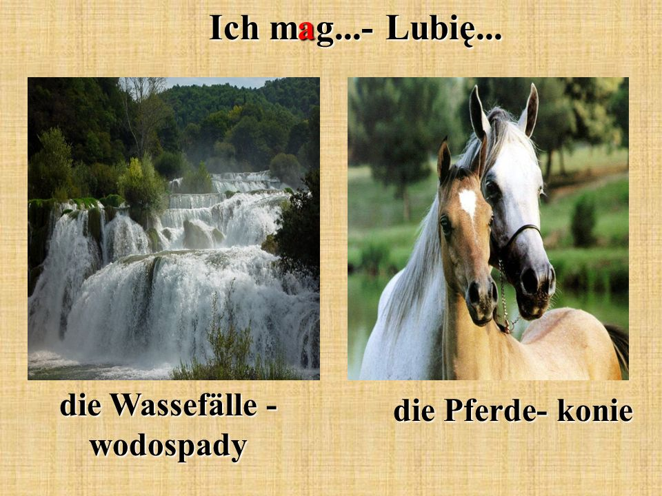 Ich mag...- Lubię... die Wassefälle - wodospady die Pferde- konie