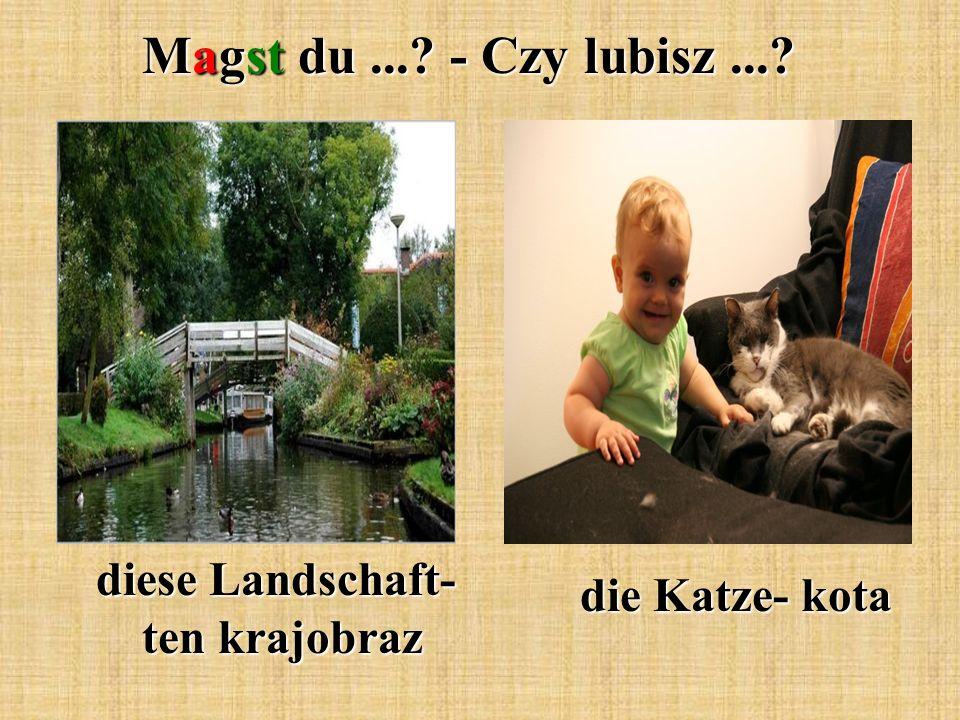 Magst du...? - Czy lubisz...? diese Landschaft- ten krajobraz die Katze- kota