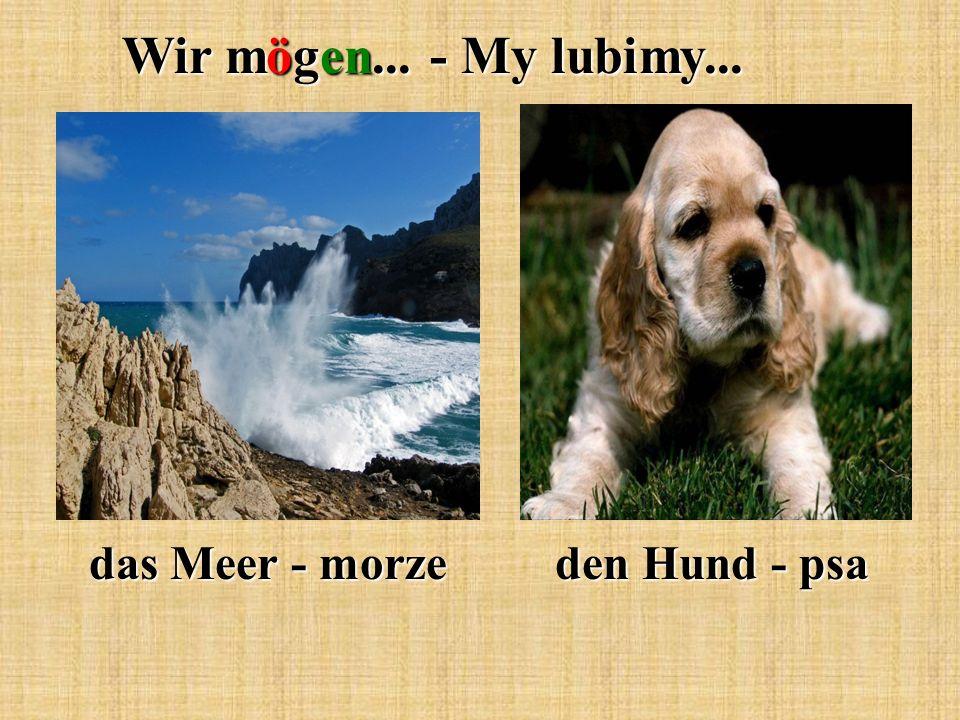 Wir mögen... - My lubimy... das Meer - morze den Hund - psa