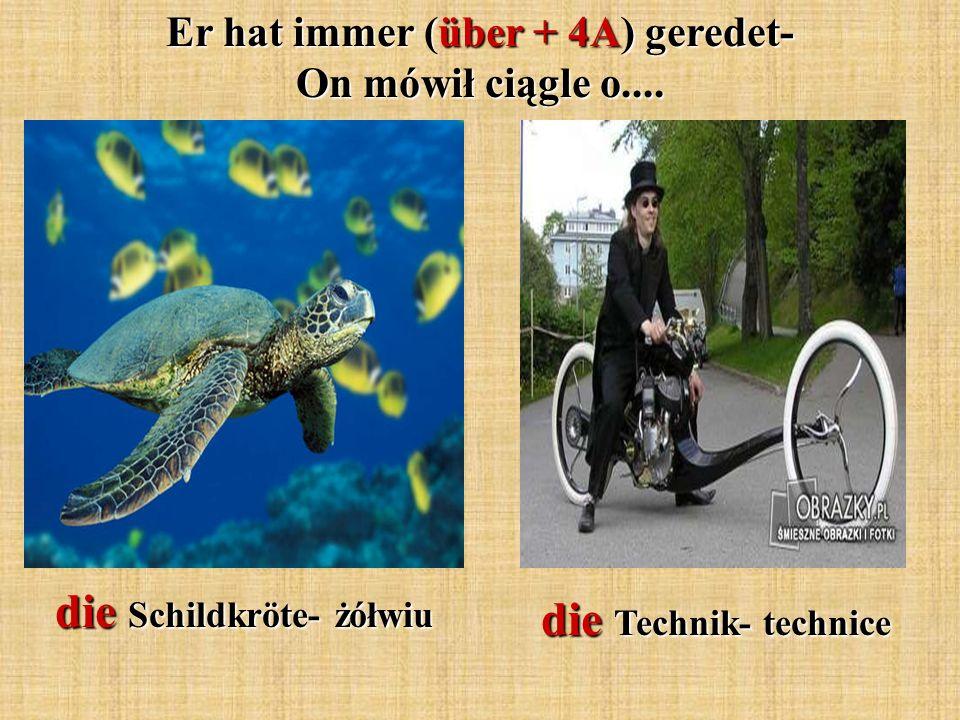 Er hat immer (über + 4A) geredet- On mówił ciągle o.... die Schildkröte- żółwiu die Technik- technice