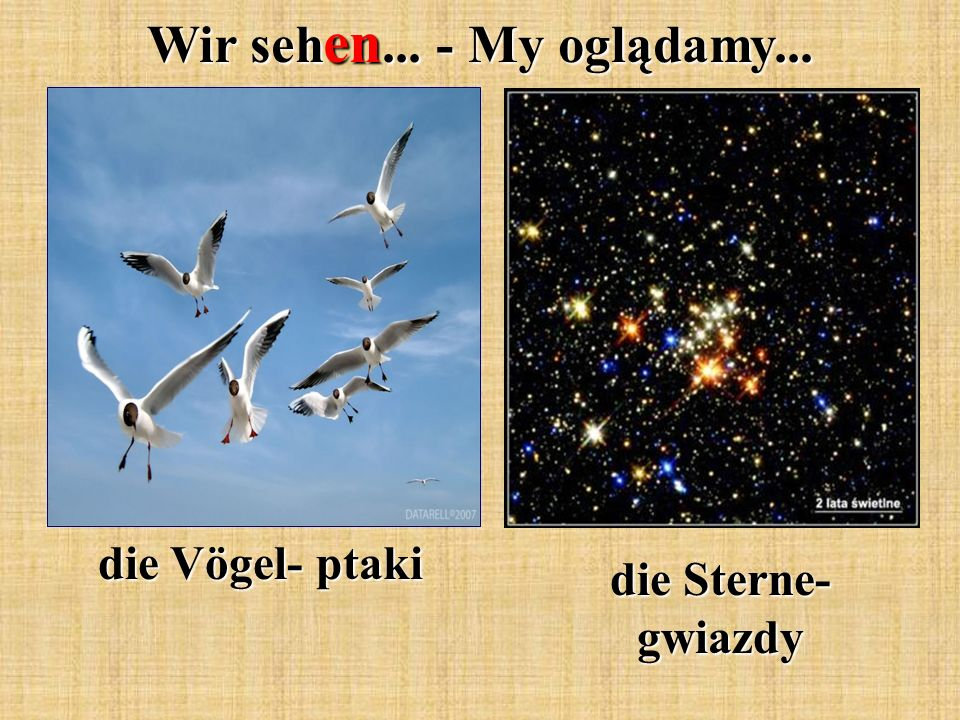 Wir seh en... - My oglądamy... die Vögel- ptaki die Sterne- gwiazdy
