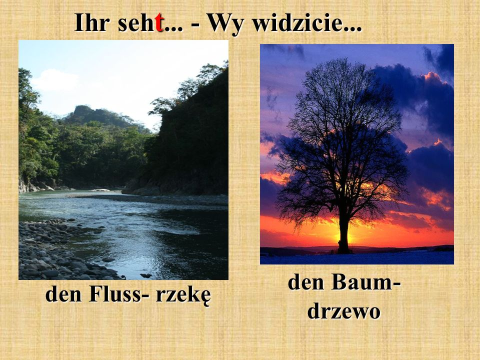 Ihr seh t... - Wy widzicie... den Fluss- rzekę den Baum- drzewo