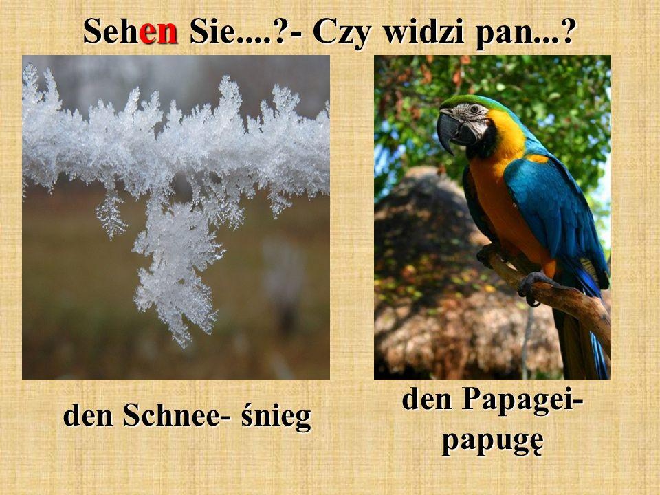 Seh en Sie....?- Czy widzi pan...? den Schnee- śnieg den Papagei- papugę