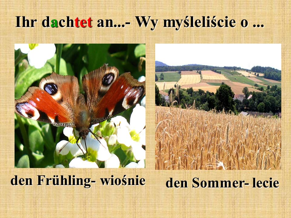 Ihr dachtet an...- Wy myśleliście o... den Frühling- wiośnie den Sommer- lecie