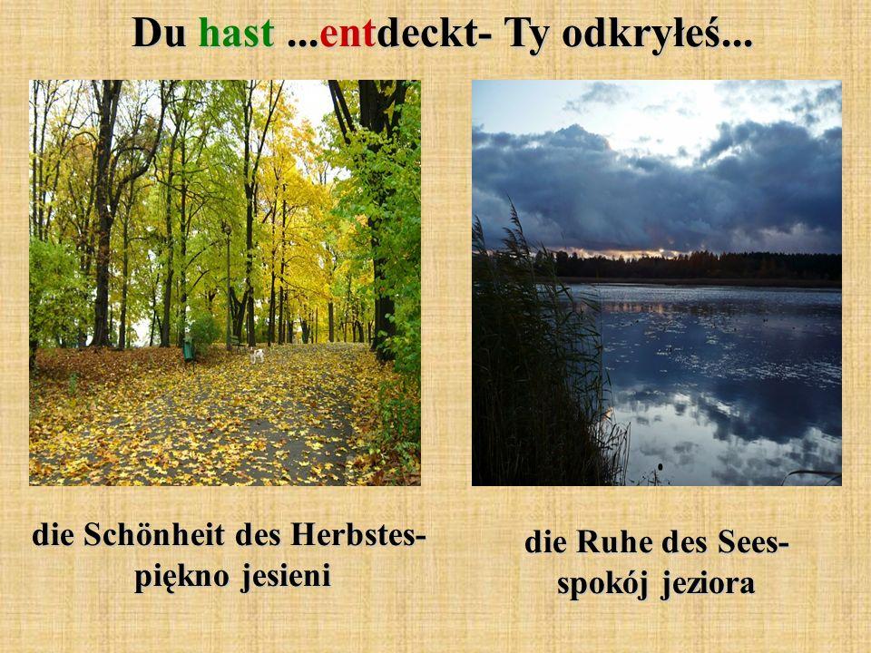 Du hast...entdeckt- Ty odkryłeś... die Schönheit des Herbstes- piękno jesieni die Ruhe des Sees- spokój jeziora