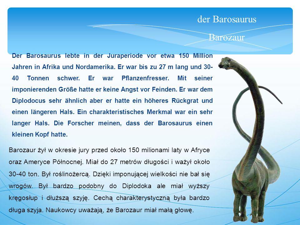 der Barosaurus Barozaur Der Barosaurus lebte in der Juraperiode vor etwa 150 Million Jahren in Afrika und Nordamerika.