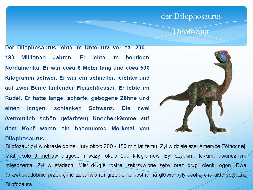 der Dilophosaurus Dilofozaur Der Dilophosaurus lebte im Unterjura vor ca. 200 - 180 Millionen Jahren. Er lebte im heutigen Nordamerika. Er war etwa 6
