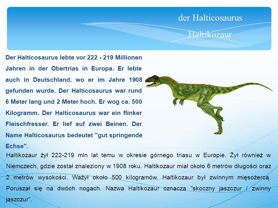 der Halticosaurus Haltikozaur Der Halticosaurus lebte vor 222 - 219 Millionen Jahren in der Obertrias in Europa. Er lebte auch in Deutschland, wo er i