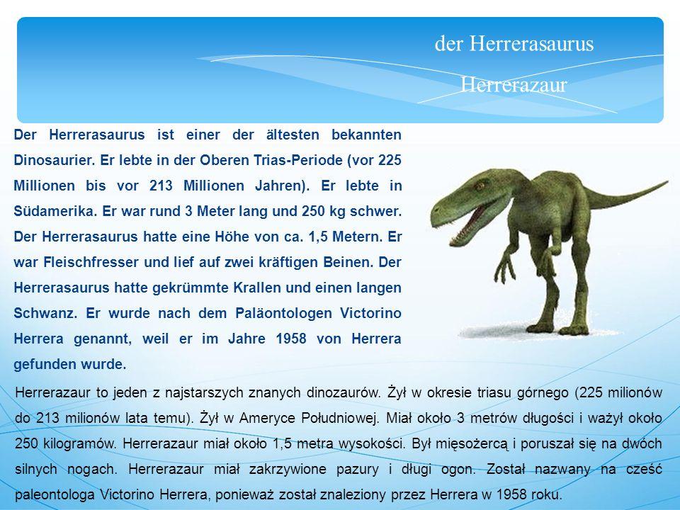 der Herrerasaurus Herrerazaur Der Herrerasaurus ist einer der ältesten bekannten Dinosaurier. Er lebte in der Oberen Trias-Periode (vor 225 Millionen