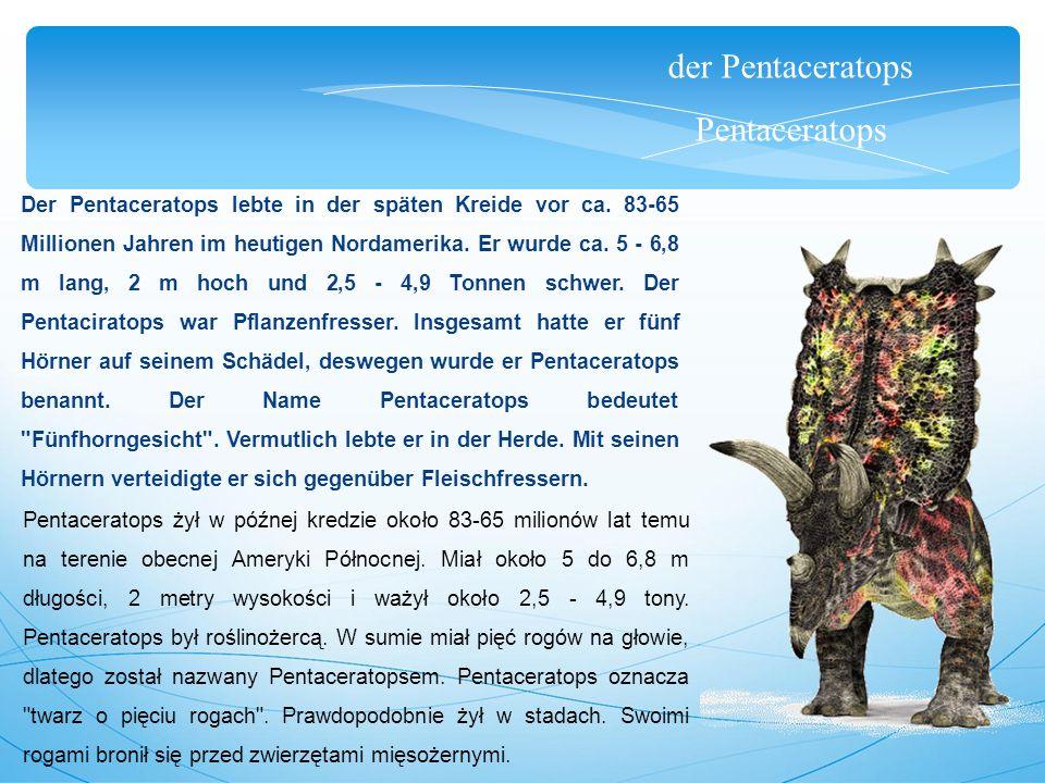 der Pentaceratops Pentaceratops Der Pentaceratops lebte in der späten Kreide vor ca. 83-65 Millionen Jahren im heutigen Nordamerika. Er wurde ca. 5 -