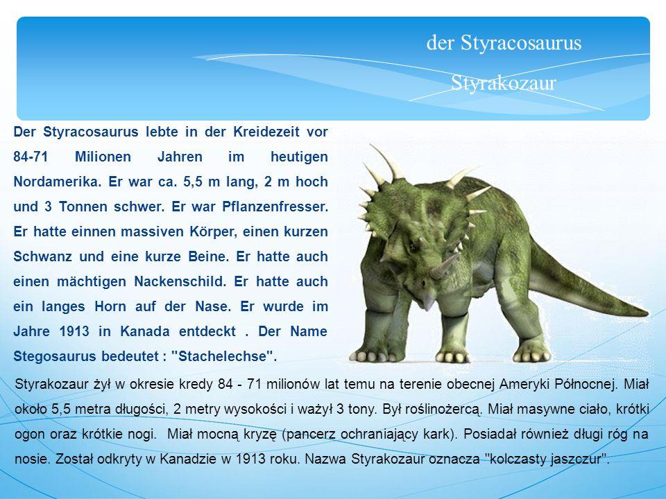 der Styracosaurus Styrakozaur Der Styracosaurus lebte in der Kreidezeit vor 84-71 Milionen Jahren im heutigen Nordamerika. Er war ca. 5,5 m lang, 2 m