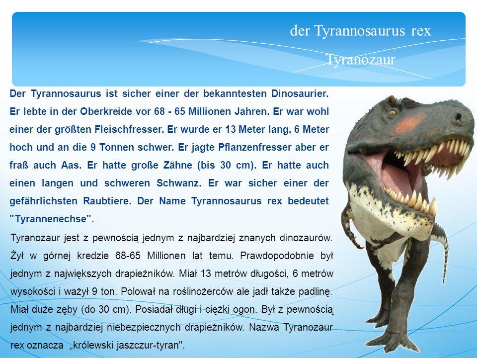 der Tyrannosaurus rex Tyranozaur Der Tyrannosaurus ist sicher einer der bekanntesten Dinosaurier. Er lebte in der Oberkreide vor 68 - 65 Millionen Jah