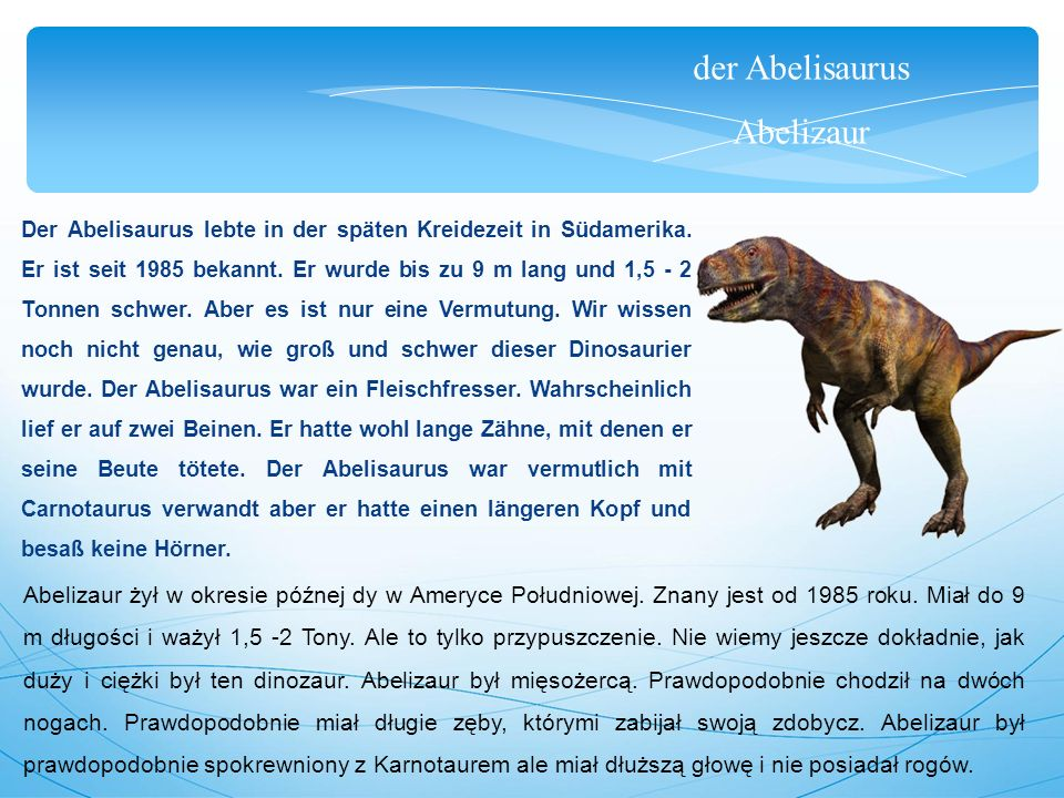 der Abelisaurus Abelizaur Der Abelisaurus lebte in der späten Kreidezeit in Südamerika. Er ist seit 1985 bekannt. Er wurde bis zu 9 m lang und 1,5 - 2