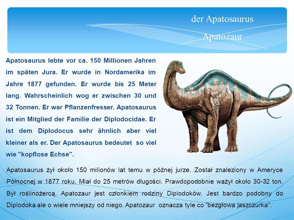 der Apatosaurus Apatozaur Apatosaurus lebte vor ca. 150 Millionen Jahren im späten Jura. Er wurde in Nordamerika im Jahre 1877 gefunden. Er wurde bis