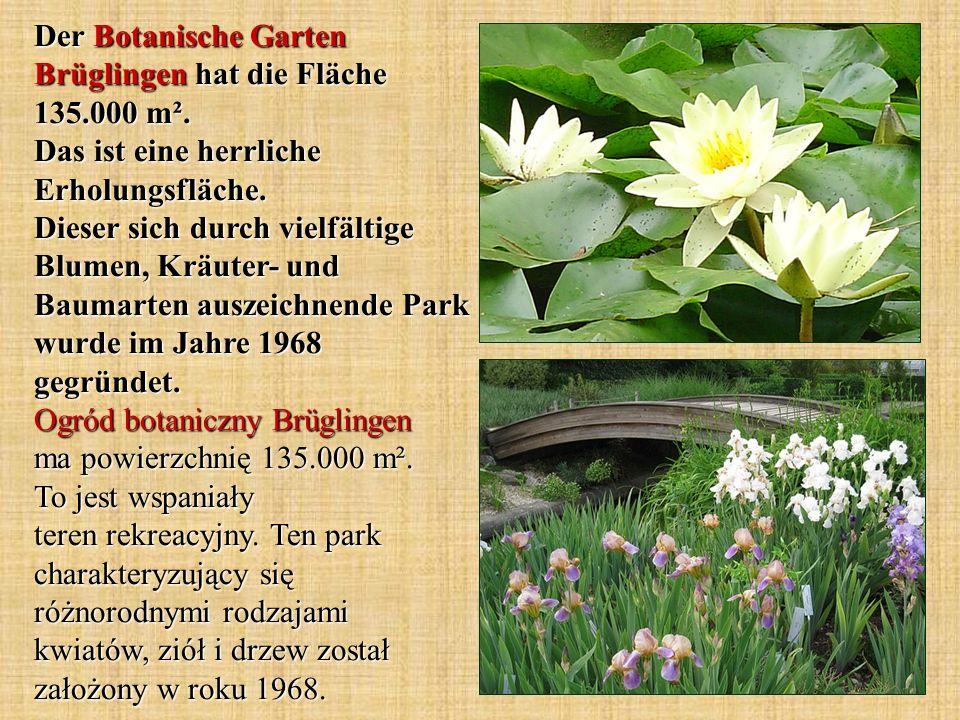 Der Botanische Garten Brüglingen hat die Fläche 135.000 m².