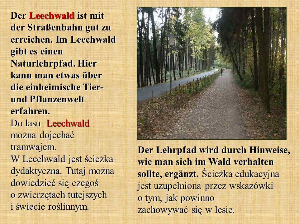 Der Lehrpfad wird durch Hinweise, wie man sich im Wald verhalten sollte, ergänzt.