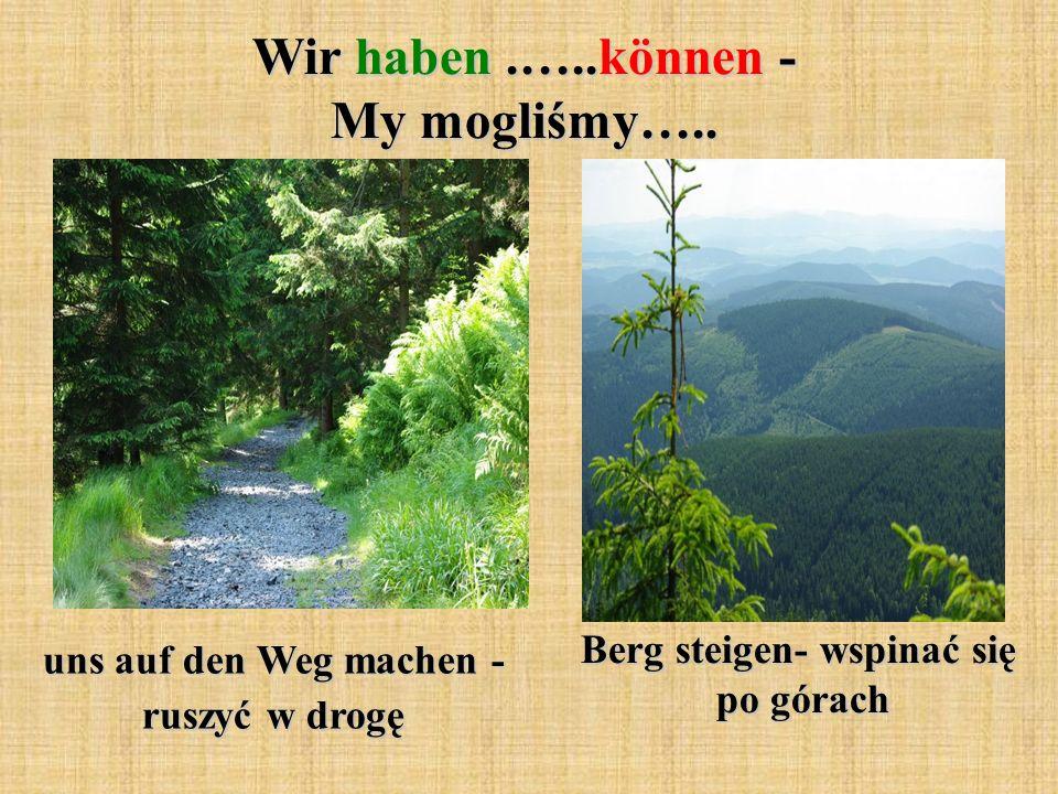 Wir haben.…..können - My mogliśmy….. uns auf den Weg machen - ruszyć w drogę Berg steigen- wspinać się po górach